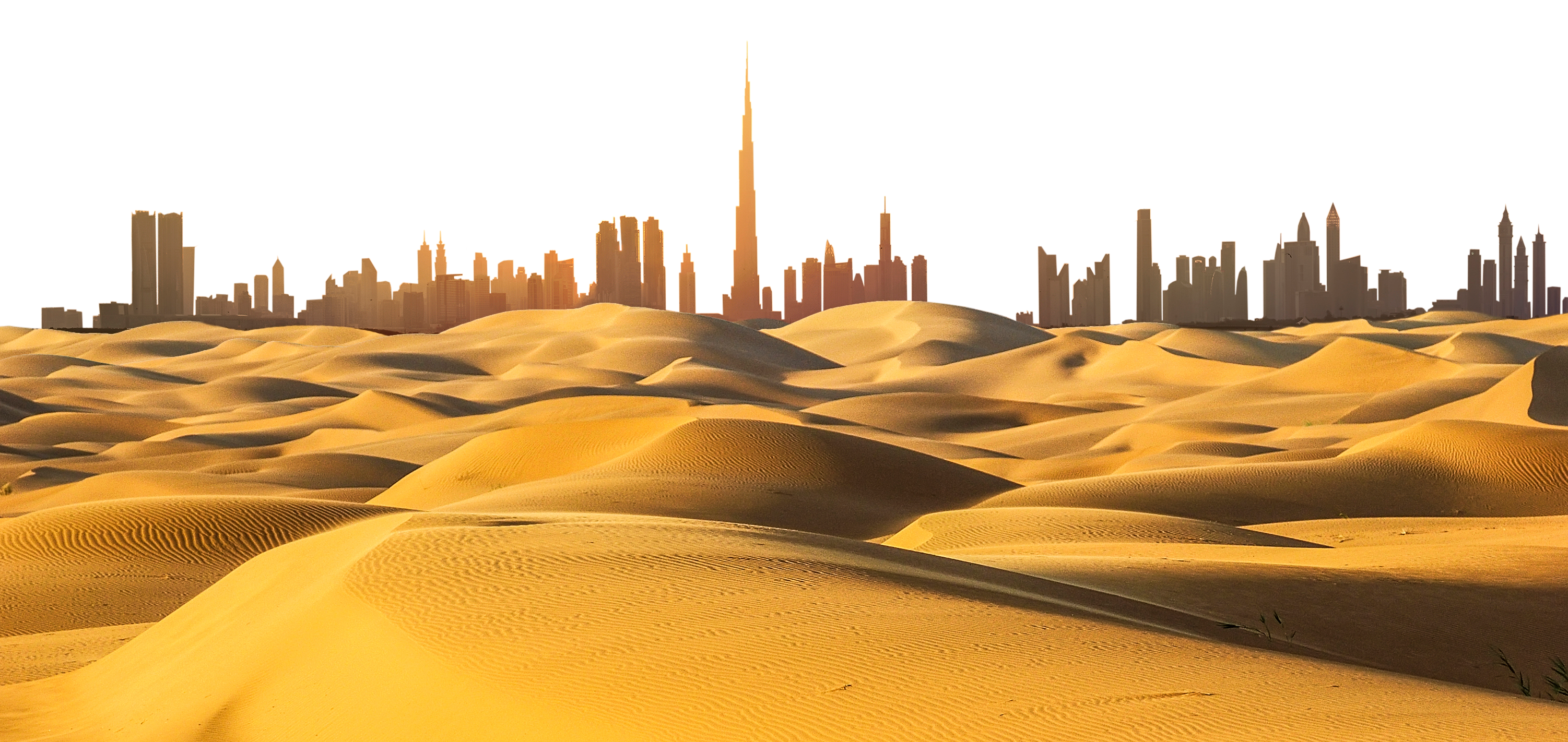 The skyline of Dubai, UAE (WaitForLight/Shutterstock)